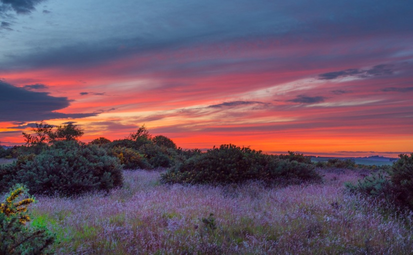 Sunset at TheMoors